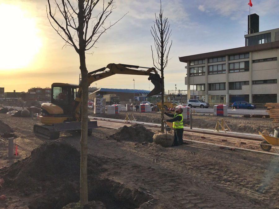 Plaatsen bomen stationsgebied