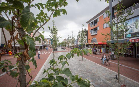 Heringerichte Beatrixstraat